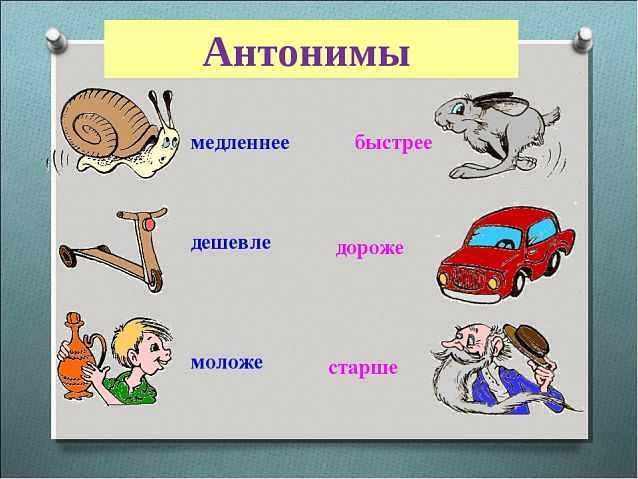 антонимы примеры