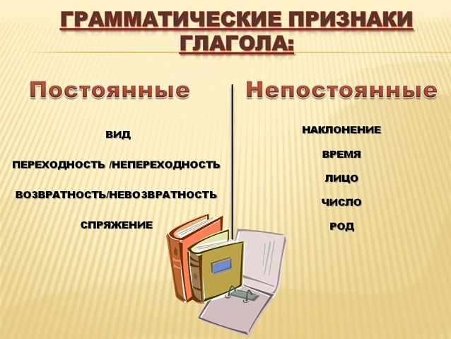 Грамматические признаки глагола