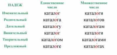 Ударение в слове каталог