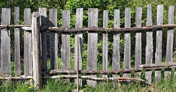 Некрашеный забор