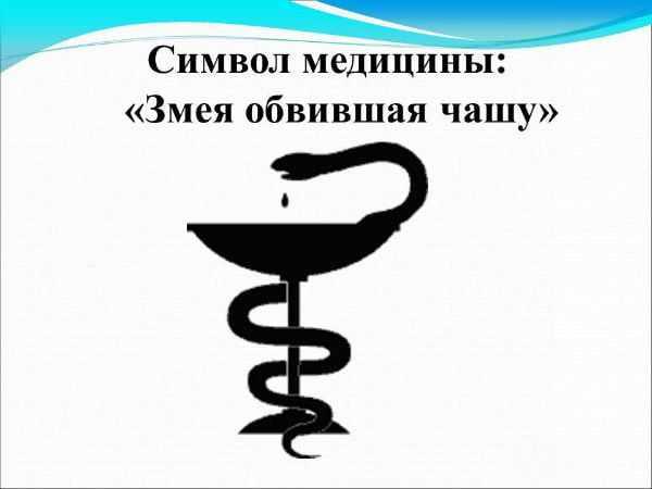 Символ медицины змея обвившая чашу