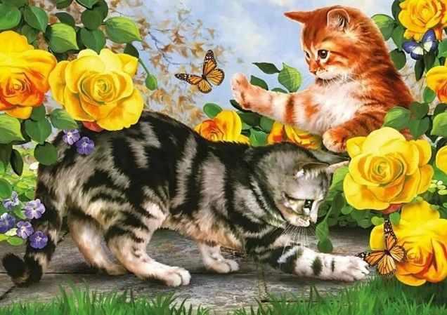 Коты ловят бабочек