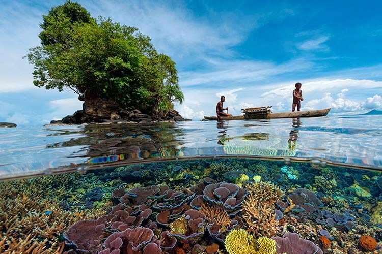 Папуа — Новая Гвинея: отзыв туриста - Полезный интернет-журнал Good ...