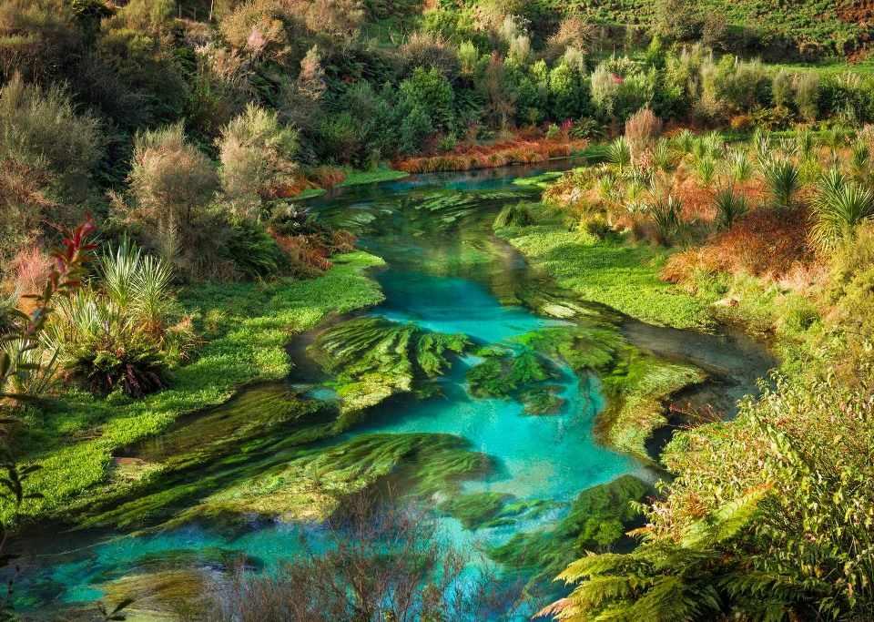 Природа Новой Зеландии New Zealand