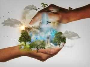 Как человек влияет на природу