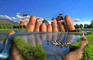 Организации по защите окружающей среды