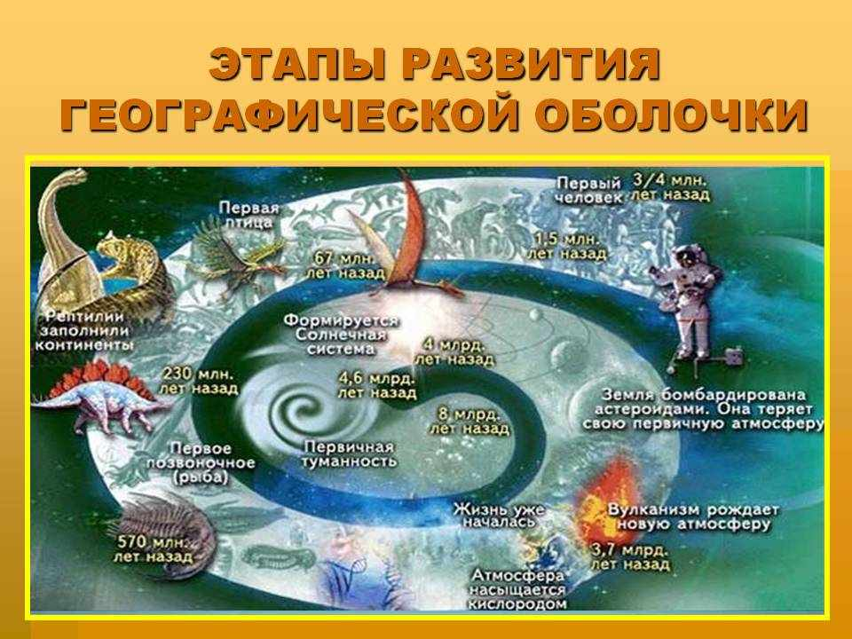Природные комплексы. Видеоурок. География 6 Класс