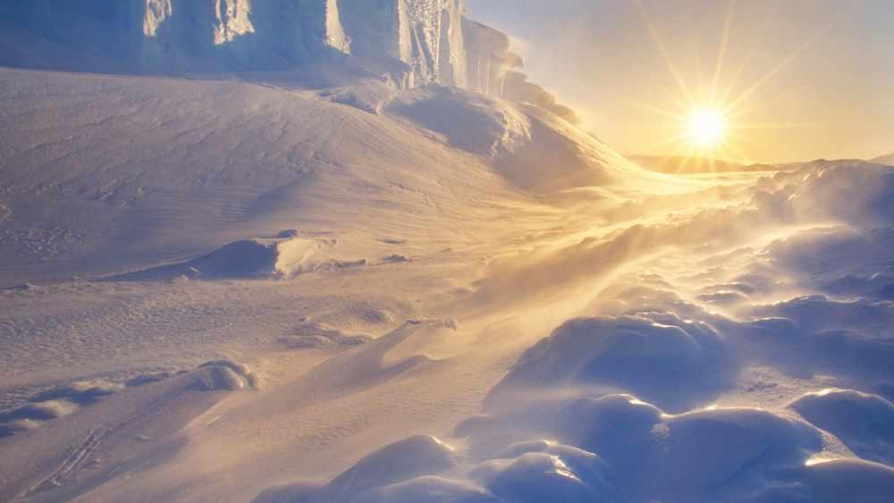 зона арктических пустынь россии