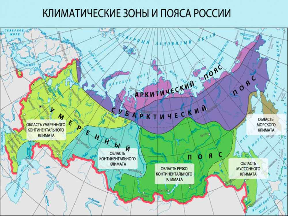 почвы россии