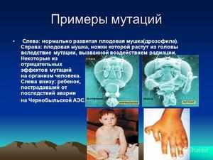 Причины хромосомных мутаций