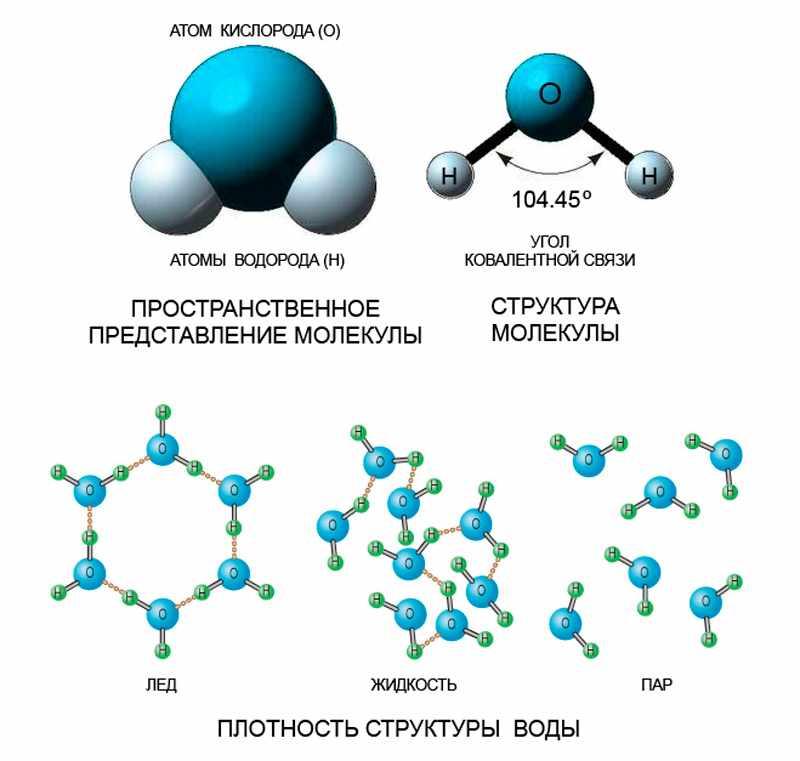 Картинки Строение Молекулы Воды