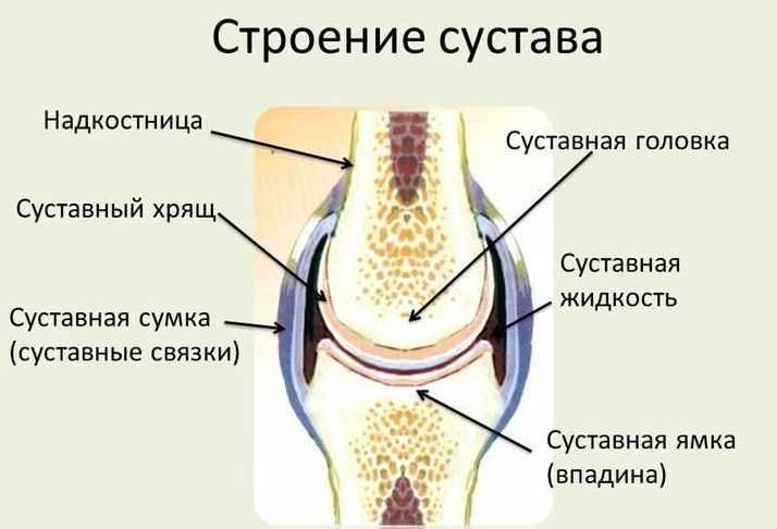 Народные средства от боли в колене и опухоли - лечение суставов и отзывы