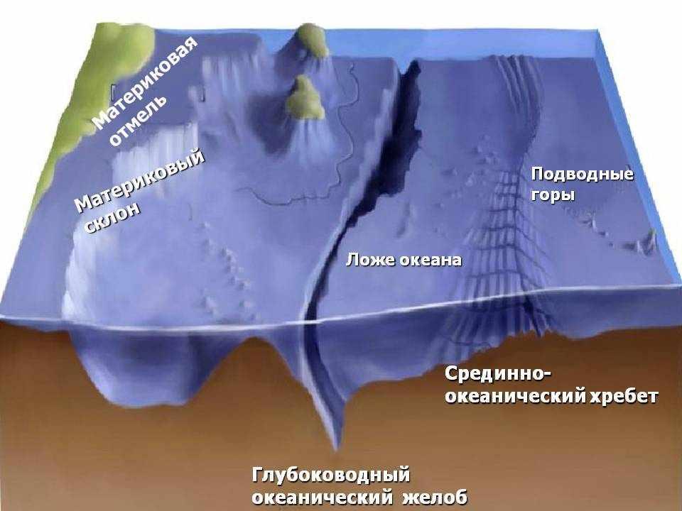 Рельеф дна Мирового океана. Видеоурок. География 6 Класс
