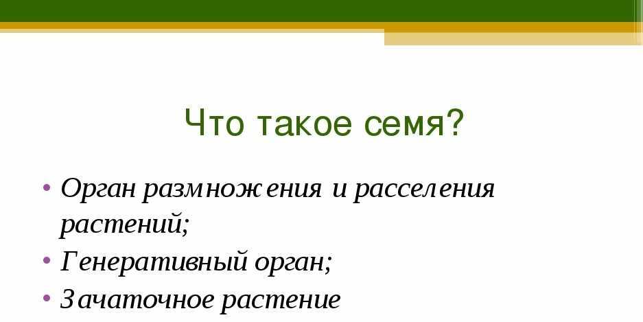 Презентация к уроку биологии на тему «Семя, его строение и значение ...