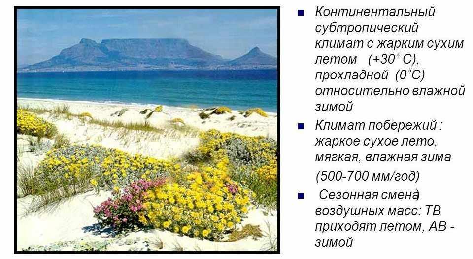 Презентация на тему: Тема: Климатические пояса мира © Дверницкая Н ...