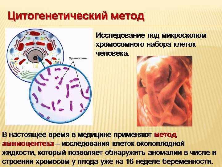 issledovanie-genetiki-cheloveka-7