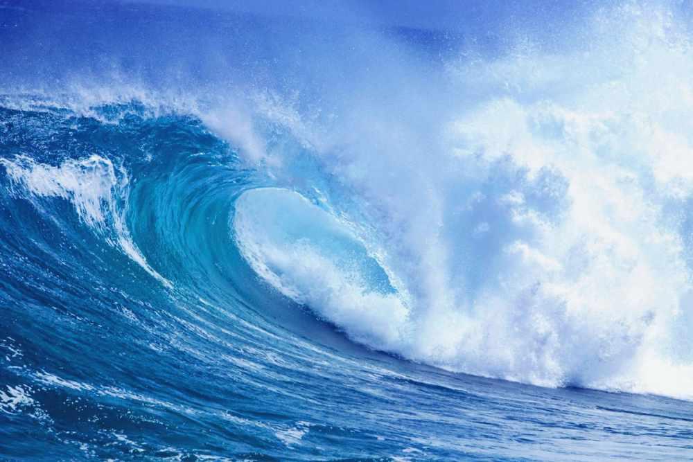 жизнь в тихом океане (главный ключ)