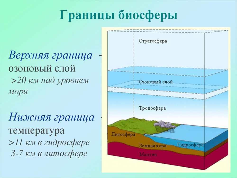 Учение о биосфере - online presentation
