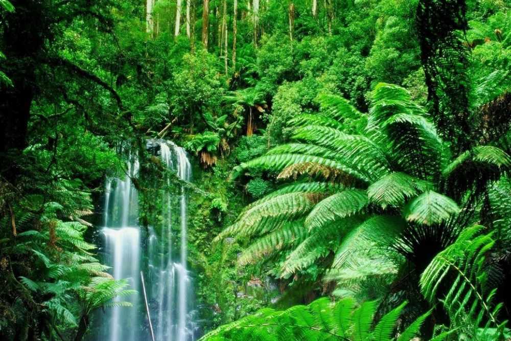 Экваториальная Гвинея - Информация для поездки - Поиск попутчиков с ...