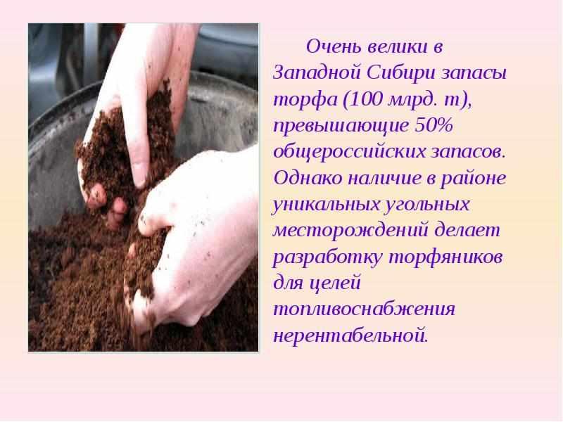 полезные ископаемые западно-сибирской равнины (главный ключ)