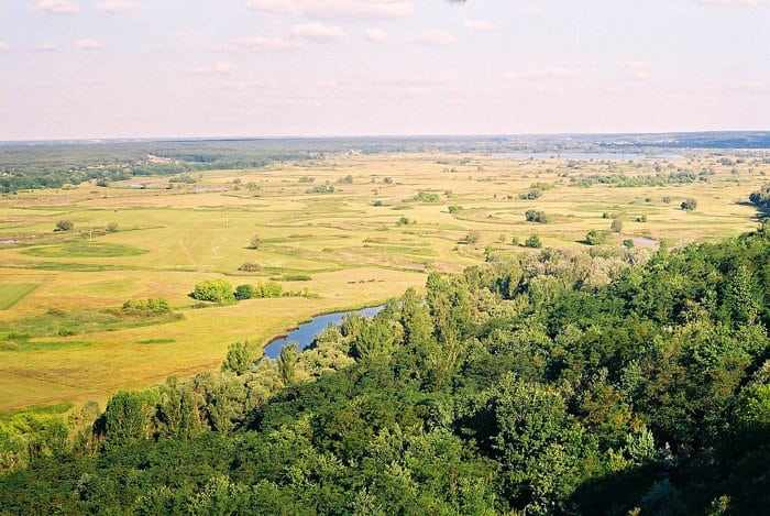 Характеристика природной зоны лесостепи