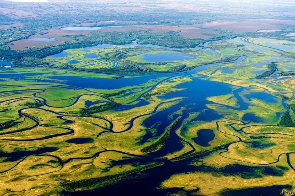 Западно-сибирская равнина с высоты птичьего полета