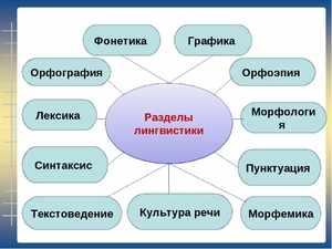 Разделение лингвистики