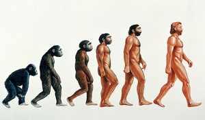 Теория происхождения людей