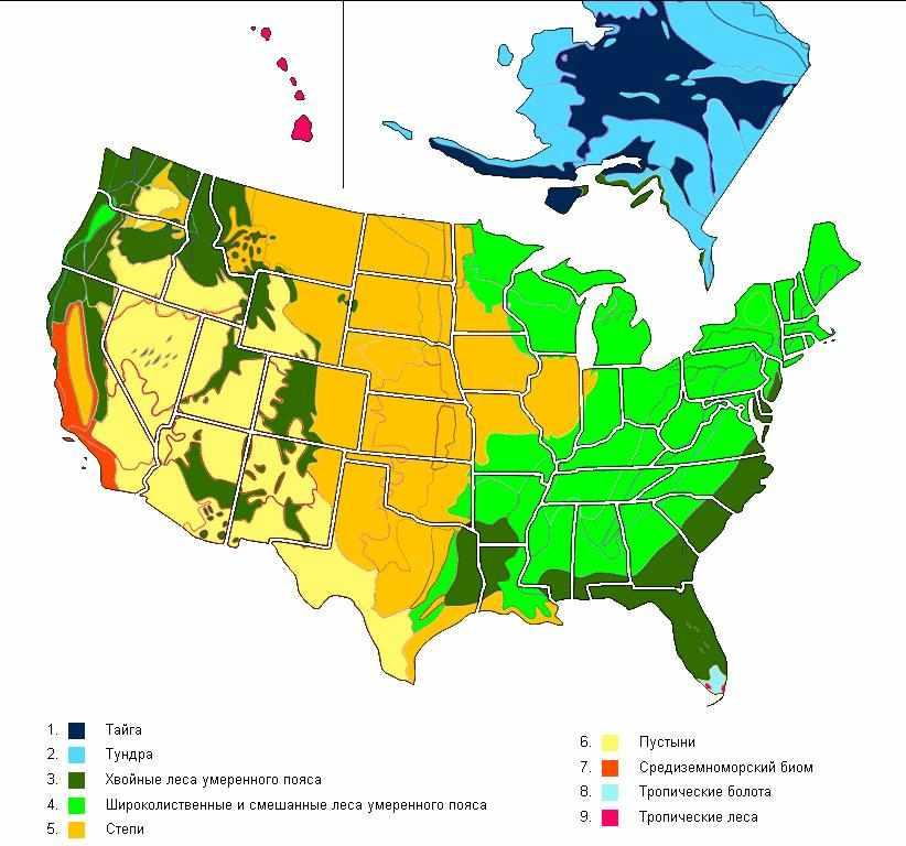 Страна США - расположение, рельеф, климат и самое важное