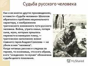 Автор рассказа «Судьба человека»
