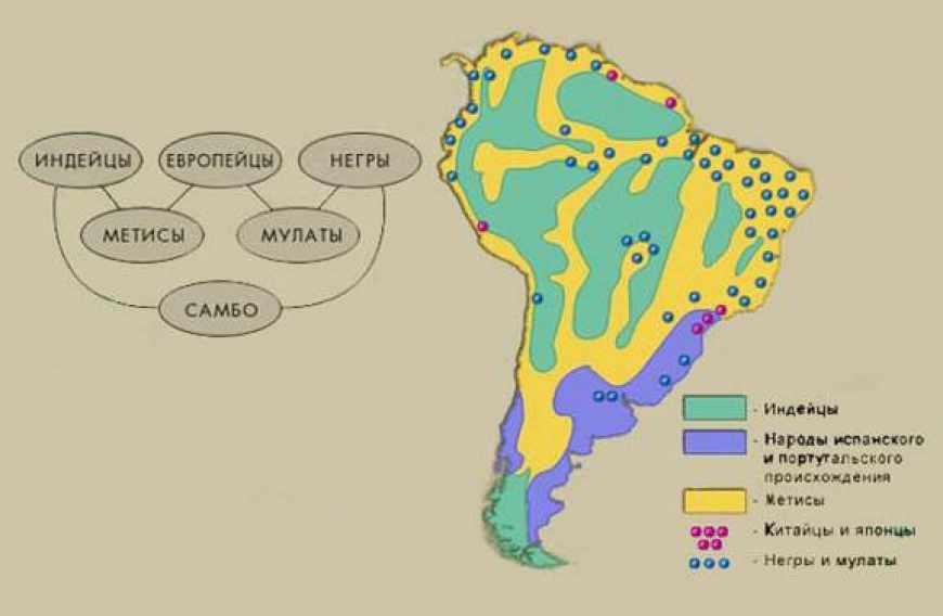 Население. Расы и расовые группы. Политическая карта материка.