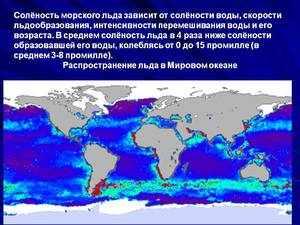 Солёность морского льда
