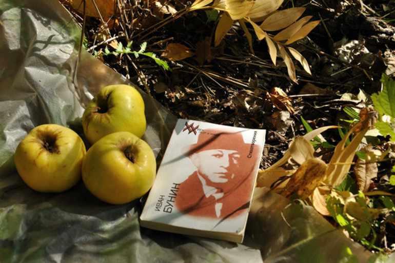 Антоновские яблоки сюжет