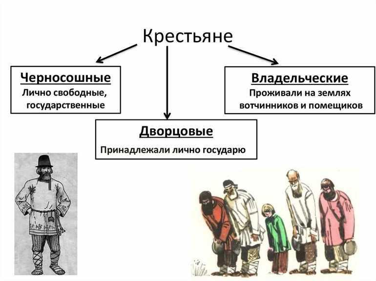 Владельческие крестьяне и черносошные крестьяне таблица