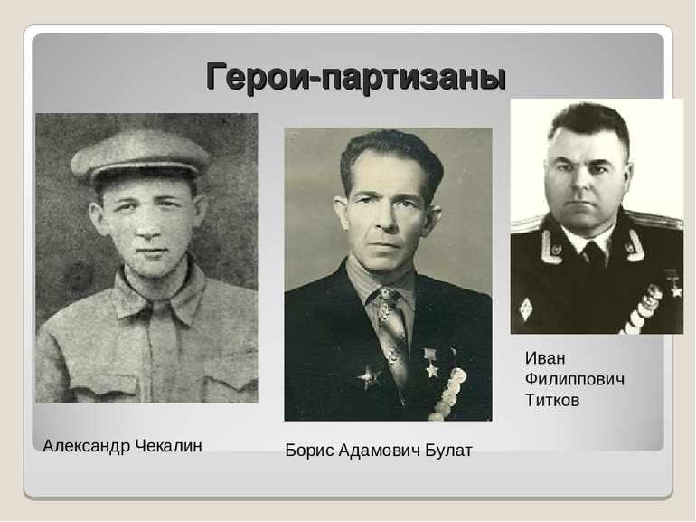 Партизаны герои