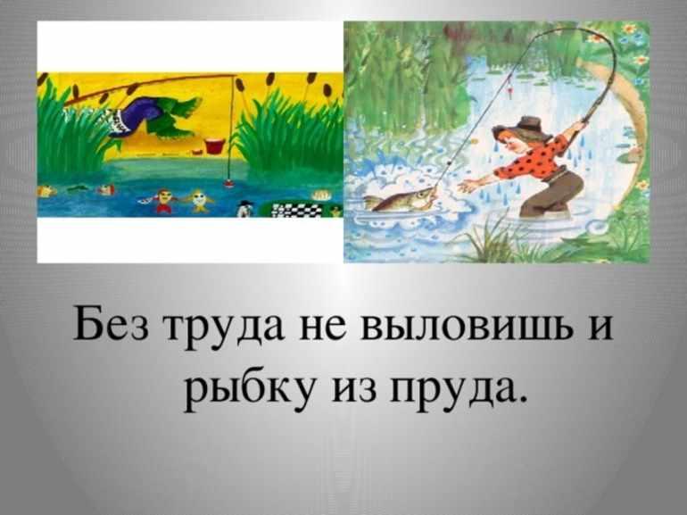 Пословица «Без труда не выловишь рыбку из пруда»