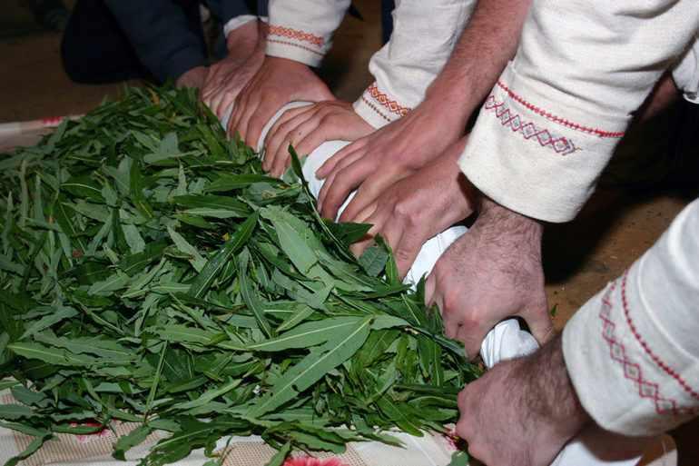 Сушить лекарственные травы