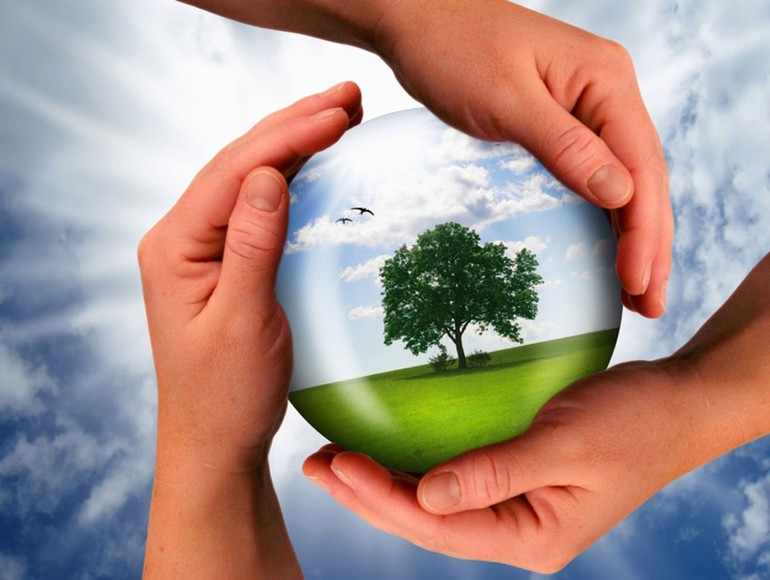 «Каким должно быть отношение человека к природе»
