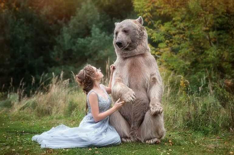 Медведь забрал девушку в лес