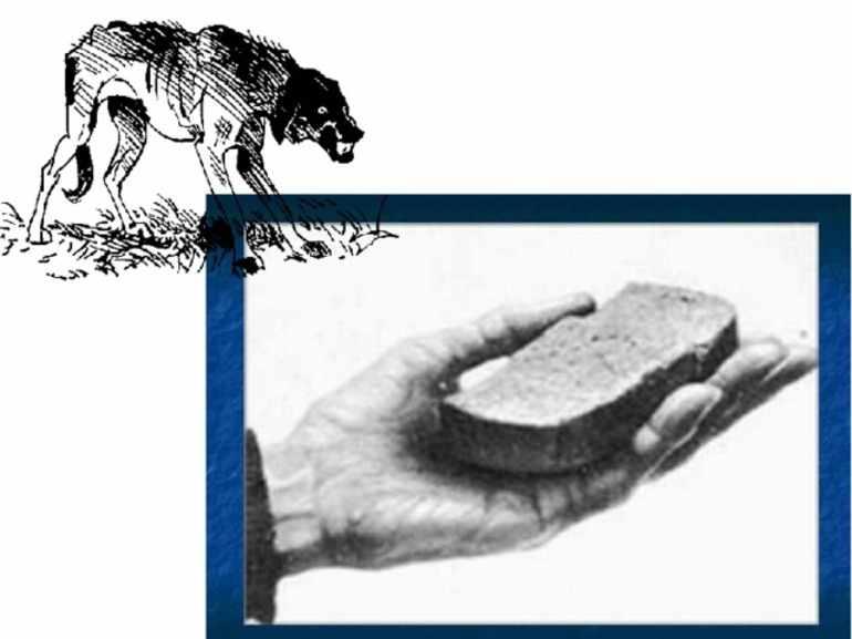 Читать хлеб для собаки тендряков