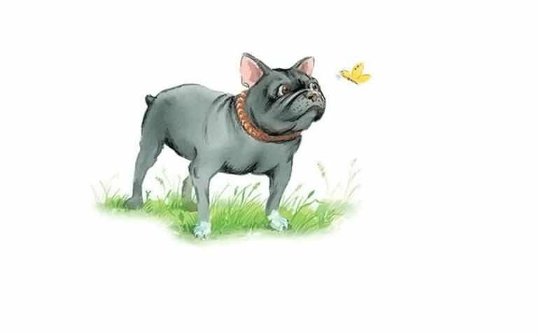 Образ собаки Бульки
