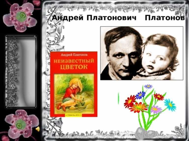 Неизвестный цветок платонов читать