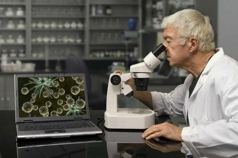 Наблюдение в биологии