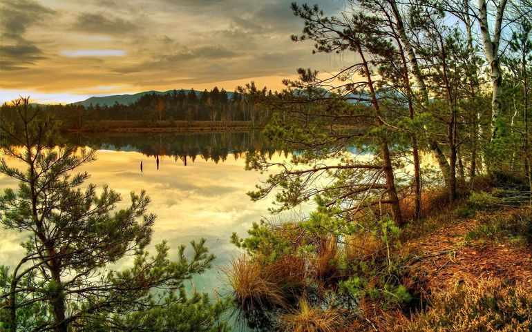 Природа в произведениях Чехова