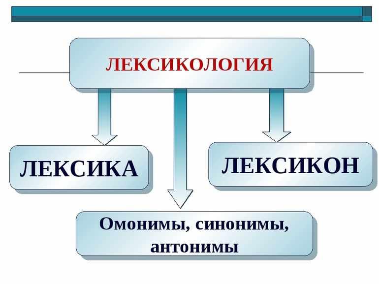 Что изучает лексикология
