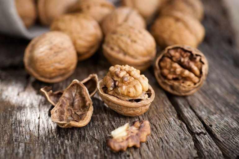 Из склереид формируется скорлупа орехов