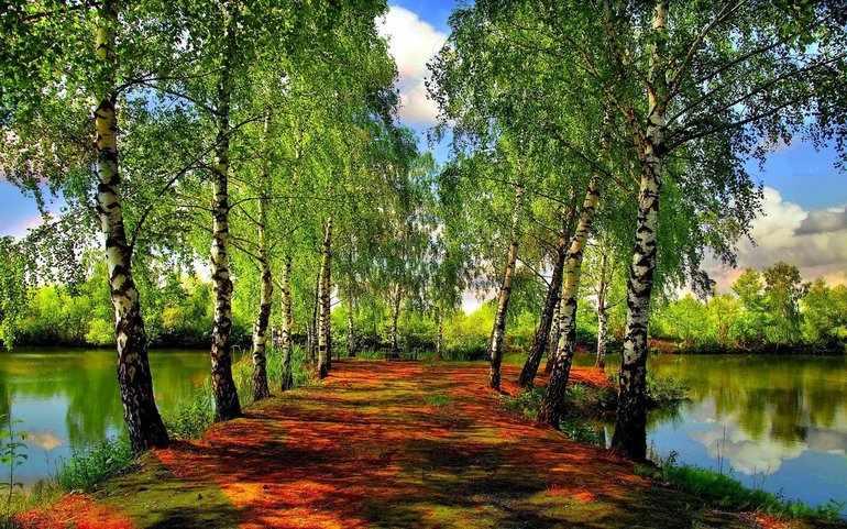 Пейзаж в произведениях Чехова