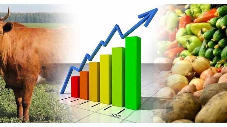 Рост производства продовольствия