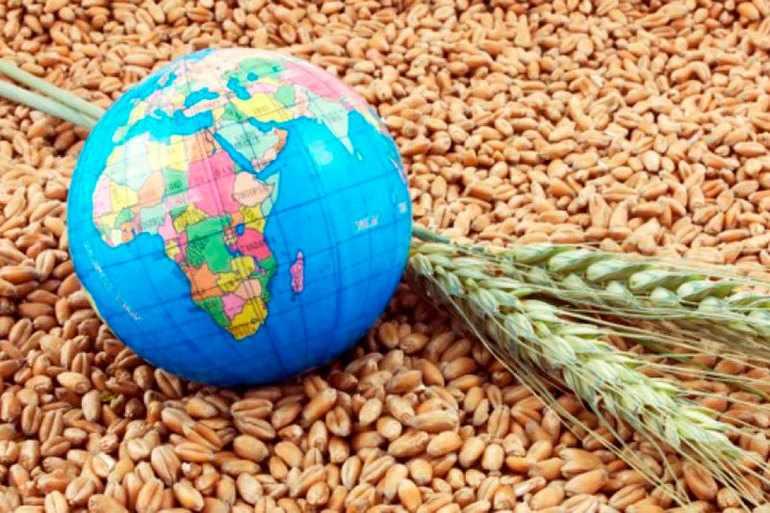 Глобальная продовольственная проблема