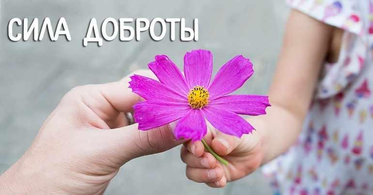 В чем заключается сила доброты